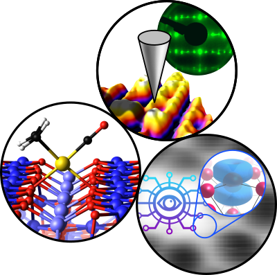 Unraveling CO adsorption on model single-atom catalysts